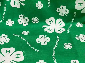 What does 4-H mean?