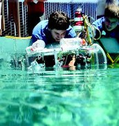 D-B EXCEL MATE Underwater Robotics Team