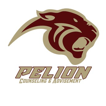 Pelion High School