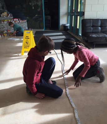 Grade threes measured using non-standard measurement